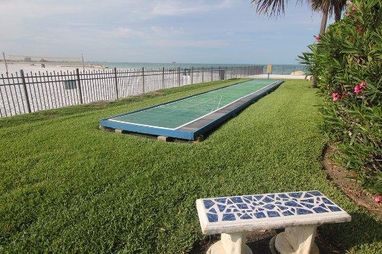 Pool View - Picture of Caprice Resort, St. Pete Beach - Tripadvisor
