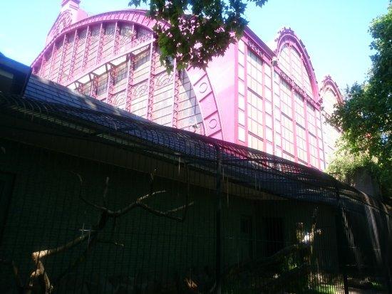 Antwerp Zoo (Dierentuin): Blick auf Bahnof Central
