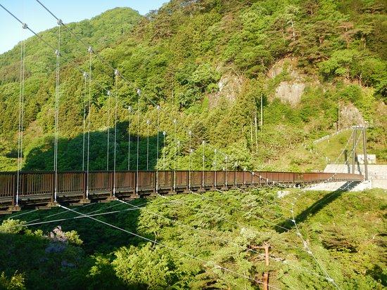 Hotel Sunshine Kinugawa : ホテルの横にある橋、有名らしい。橋を渡って10分ぐらいで、見晴らしの良い展望台に出るので、朝の散歩に最適。