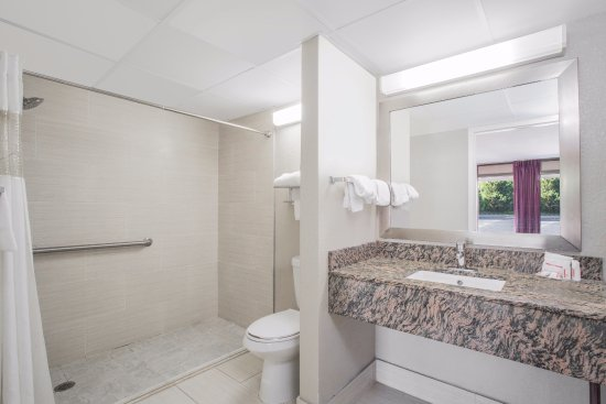 Ramada Edgewood Hotel and Conference Center : Handicapped Bathroom