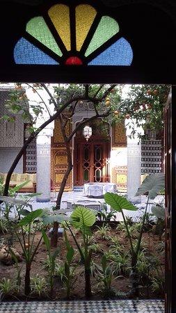 Riad Les Chrifis : dit is een prachtige binnentuin waar je de hele dag vogels hoort.