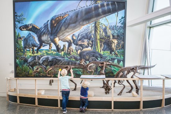 University of Alaska Museum of the North: Explore Alaska's ancient past thanks to our fossil collection.