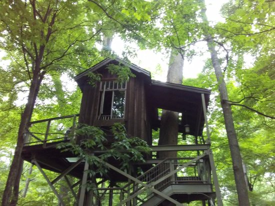 My fave tree house picture of longwood gardens kennett - Places to eat near longwood gardens ...