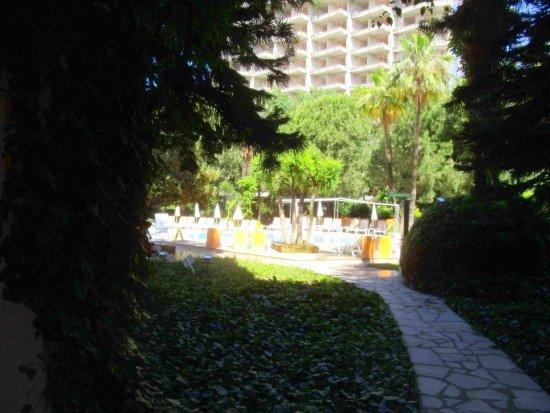 Green Peace Hotel: Территория отеля - один сплошной сад