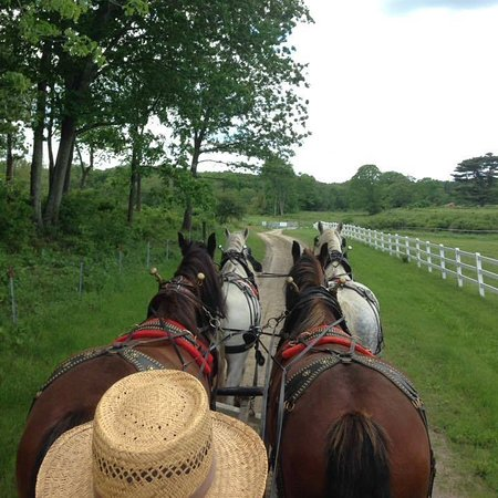 Palmer, MA: Check out this 4 horse hitch