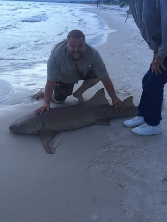 Off the beach shark fishing day trips panama city beach for Shark fishing panama city beach
