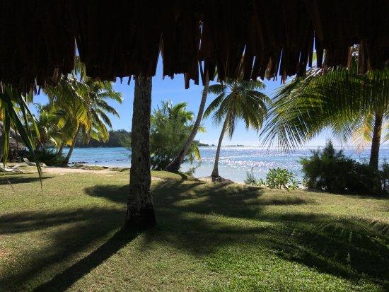 Hotel Les Tipaniers: Vue depuis l'un des bungalows plage