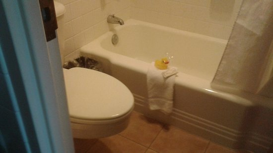 Rubber duck cameo - Picture of O\'Haire Inn, Great Falls - TripAdvisor