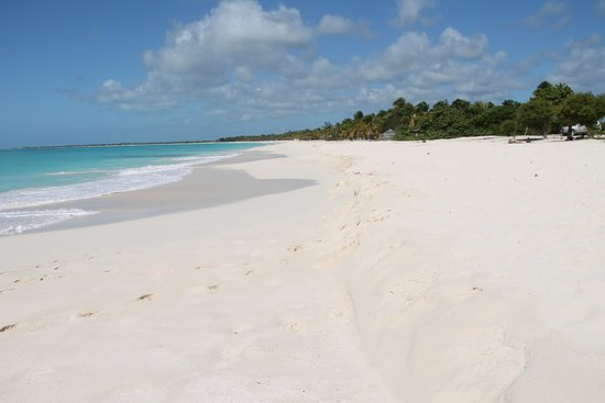 Barbuda Cottages: Princess Dianna Beach the most georgeous beach in the world and almost always empty of people