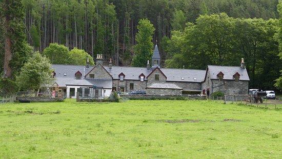 Braemore Square Country House: Rückseite des Hauses