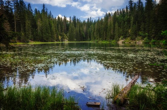 Bar Municipality, Montenegro: Zminje (Snake) Lake, settled under Durmitor massif.
