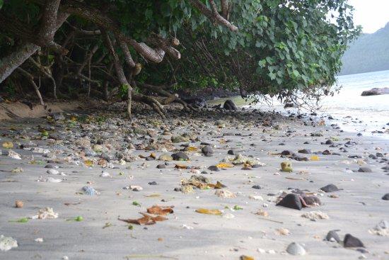 Paradise Beach: Unspoiled beach