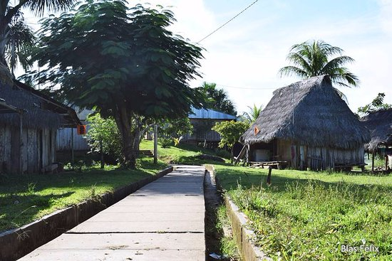 Yurimaguas, Pérou: Vereda peatonal en el pueblo de Cuipari
