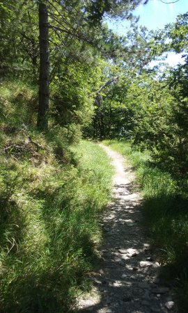 Bagno di Romagna, Italië: The trail is mostly in the shade
