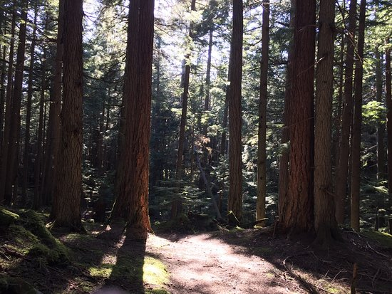 Moran State Park: photo5.jpg