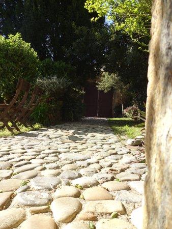 Landscape - Picture of La Casona de Villanueva, Villanueva de Colombres - Tripadvisor