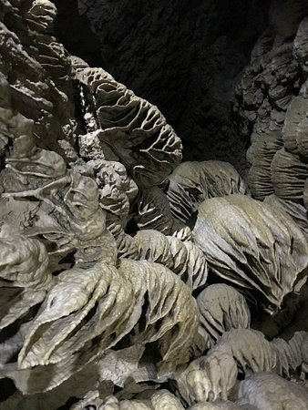 Oregon Caves National Monument: photo2.jpg