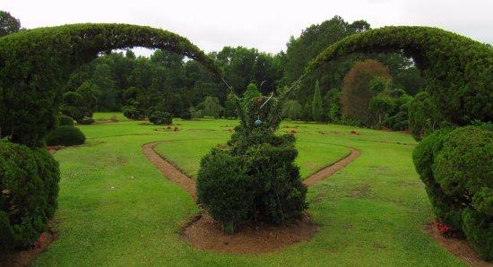 Pearl Fryar Topiary Garden Picture Of Fryar S Topiary Garden