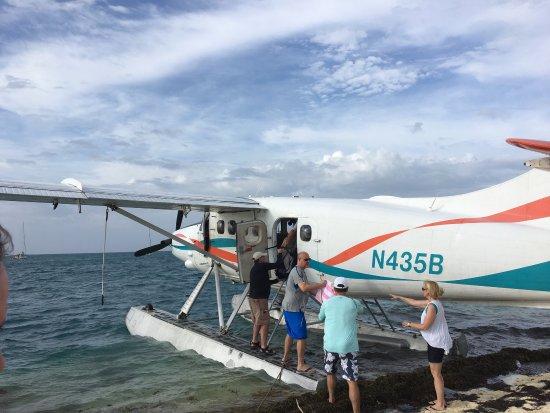 Key West Seaplane Adventures: photo4.jpg