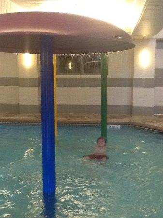 Comfort Suites Little Rock West: The pool