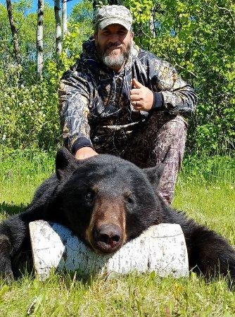 Harvest Lodge on Waterhen River: Incredible black bear