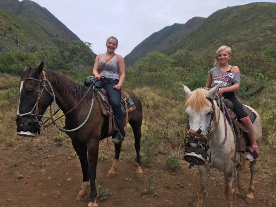 Lahaina Stables: photo1.jpg