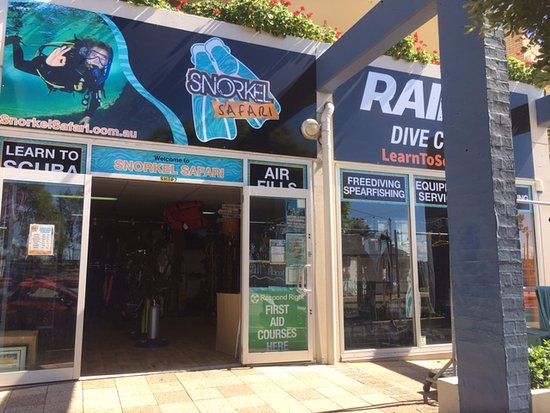 Swansea, Avustralya: Our dive shop