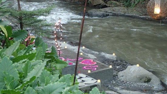 Фотография The Samaya Bali Ubud