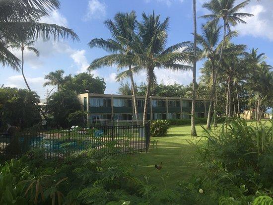 Hotel Coral Reef : photo9.jpg