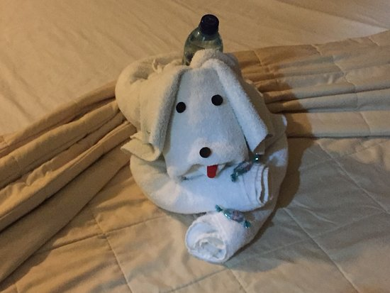 Hotel Casona del Lago: towel animal plus fresh water bottle