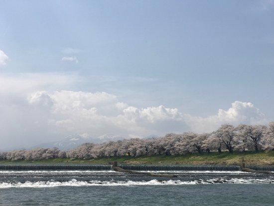 Shibata-machi, Japan: photo0.jpg