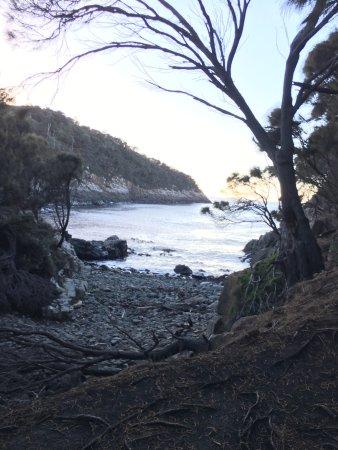 Adventure Bay照片