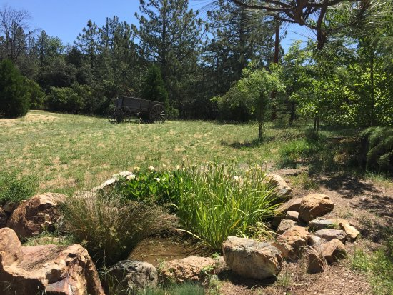 Orchard Hill Country Inn: Pond on property...