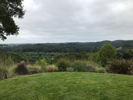 ‪هيلدسبيرغ, كاليفورنيا: View from Gary Farrell Winery‬