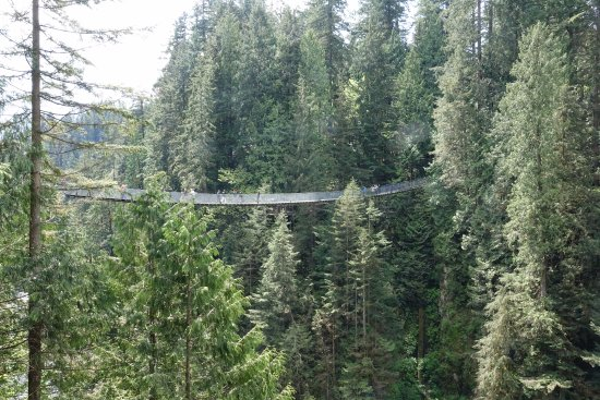 Vancouver Nord, Canada: Capilano Suspension Bridge Park