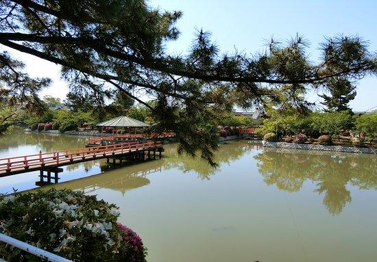 Kyuka Park