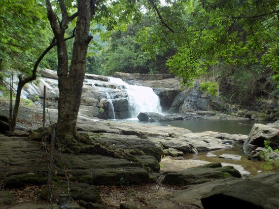 Thodupuzha, India: Thommankutu fall