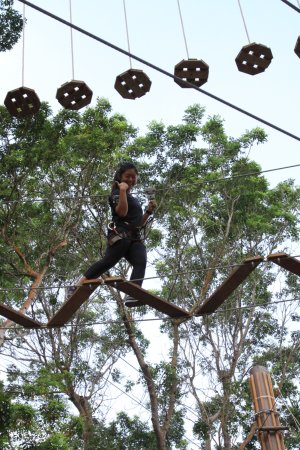 Forest Adventure Singapore 2021 All You Need To Know Before You Go With Photos Singapore Singapore Tripadvisor