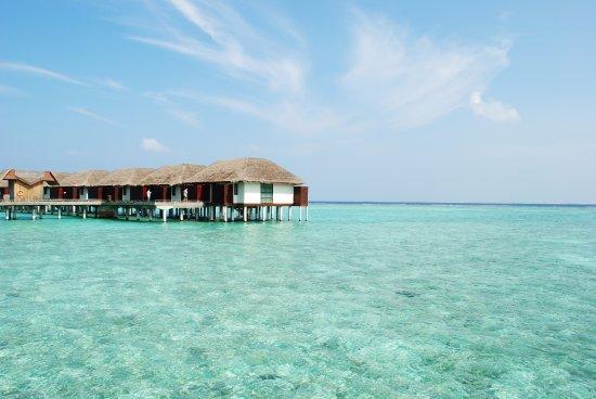 Tripadvisor Maldives Velassaru تصويري صورة فيلاسارو المالديف جزيرة فيلاسارو