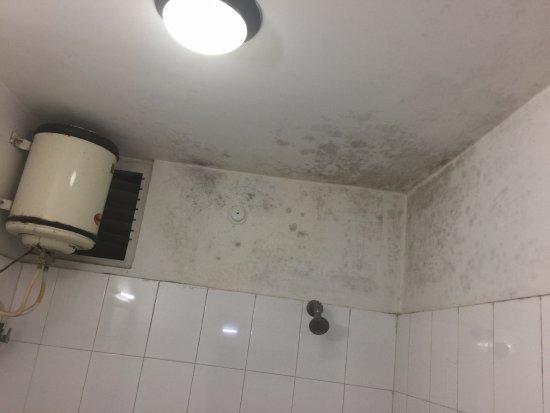 Niladri Hotel: shabby bathroom with bathroom showers. Never paid heed to repair