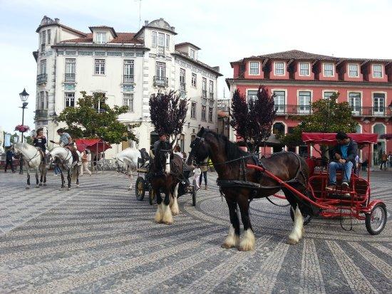 Leiria District, โปรตุเกส: Quinta do Facho - Charretes e Equitação