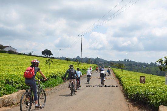 Limuru, Kenya: cycling in kiambu county