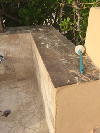 Now Jade Riviera Cancun Dirty Used Toilet Brush