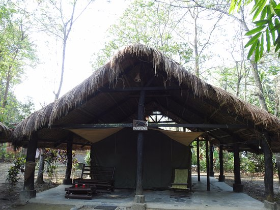Nameri Eco Camp 이미지