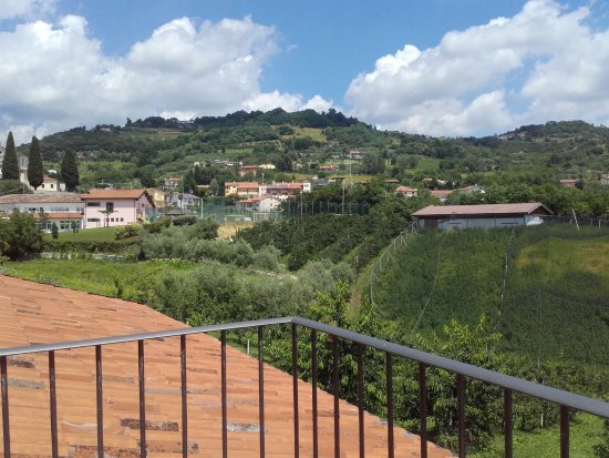 Azienda Agrituristica L'Oro Rosso - Alloggio con Cucina : TA_IMG_20170607_130136_large.jpg