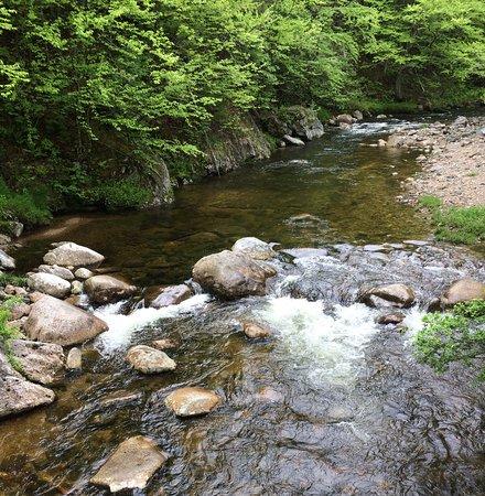 Gorham, NH: fishing or swimming