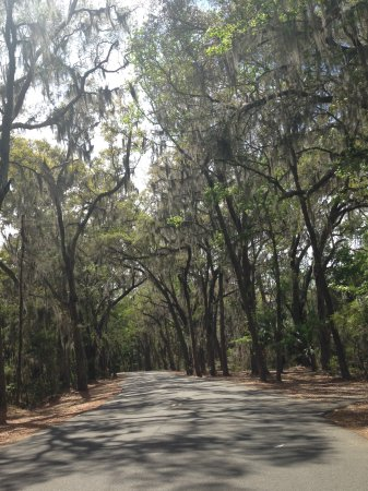 Skidaway Island State Park : Park entrance