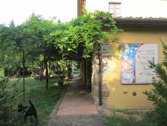 Mulino Vecchio del Cilone Bild