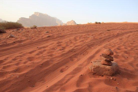 Rumshines: Touring through the desert