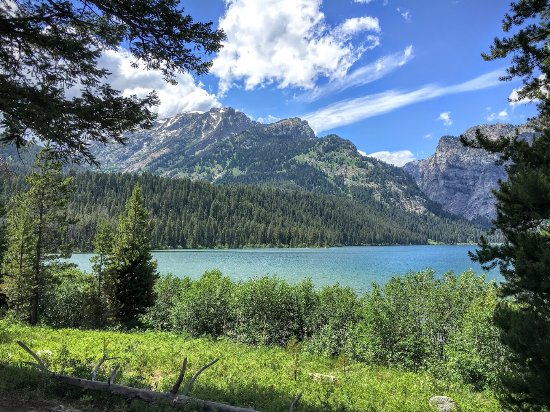 Laurance Rockefeller Preserve: Phelps Lake from the hiking trail